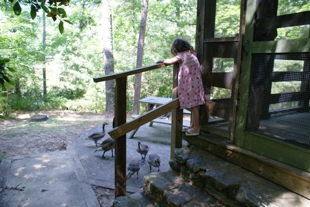 Oconee State Park, SC - Vivian feeding the geese